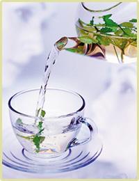 Lecznicza kwitnąca herbata